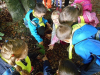 naravoslovni-dan-gozd-020