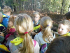 naravoslovni-dan-gozd-027
